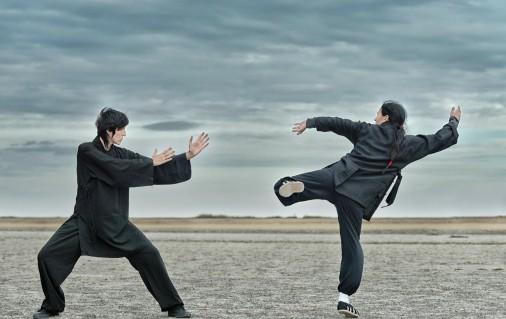Délinquance et pratique des arts martiaux : quelle corrélation ?