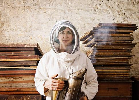 Débuter en apiculture : quel est le matériel nécessaire ?